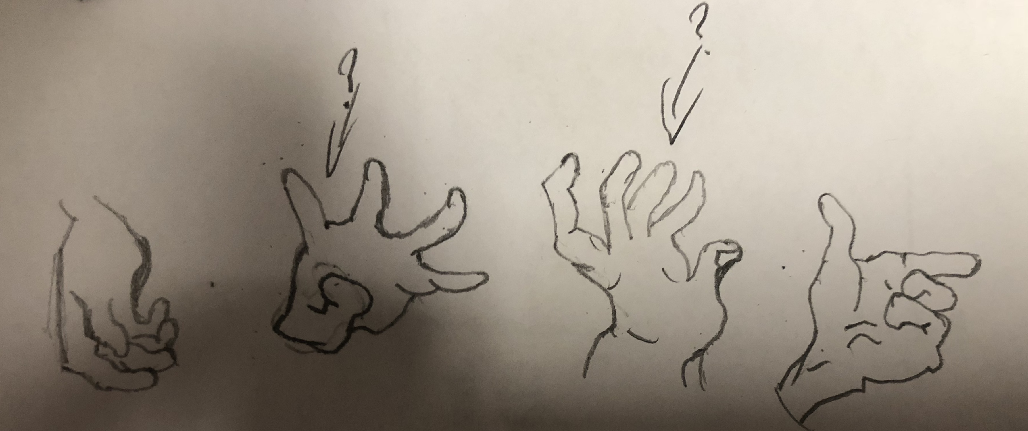 Hand Anatomy Day6 By Michael Boers Streak 0 Streak Club